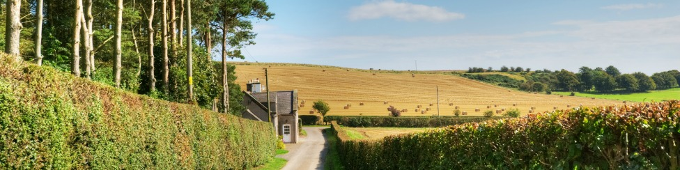 Three Acre Cottage - banner image
