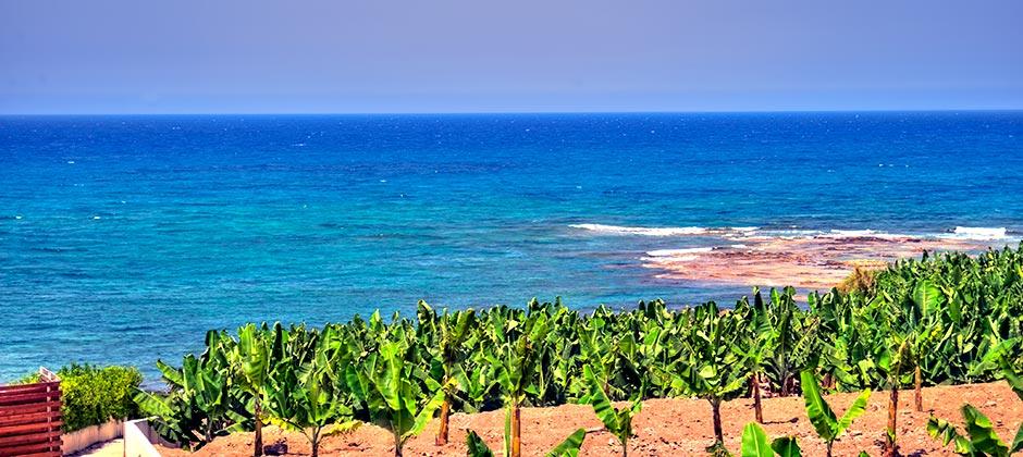 Cyprus Holiday Villa 3040