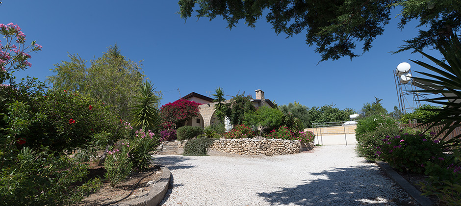 Cyprus Holiday Villa 559