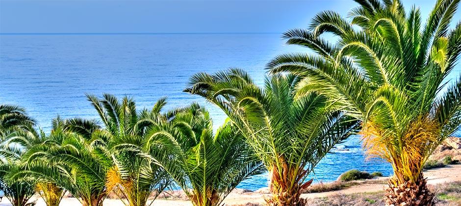 Cyprus Holiday Villa 419